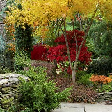 Twenty Creative Fall LandscapesIdeas