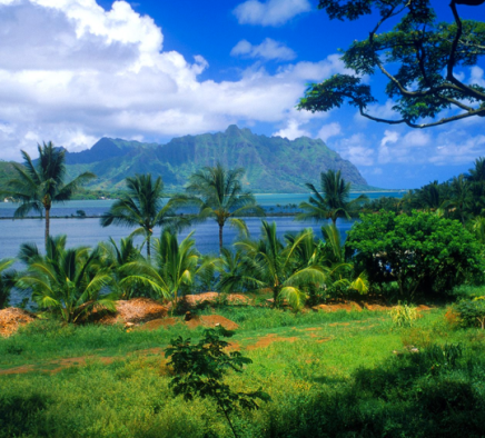 Mark Zuckerberg Reportly Purchases 375 Acres inHawaii